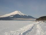 富士山と凍結湖