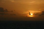 海に沈む夕焼け(ワイド壁紙あり)