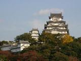 紅葉と姫路城2