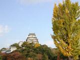 黄葉と姫路城