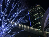 六本木ヒルズと青のイルミネーション