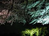 ピンク・青・緑