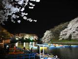 ボート乗り場夜景